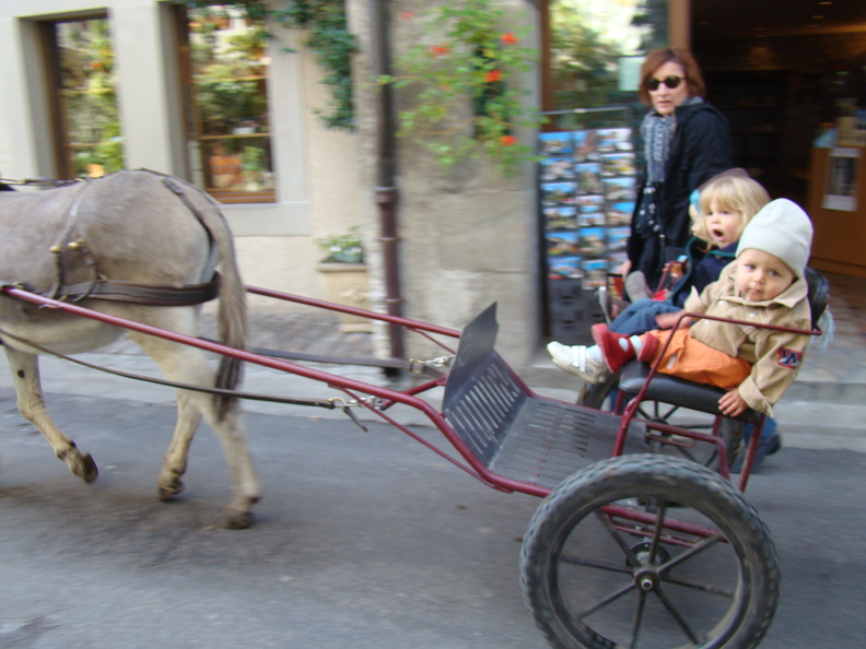 2008 10-Donkey Cart Yvoire France.jpg