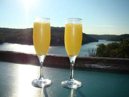 2010 08-Mimosas Beaver Lake Arkansas