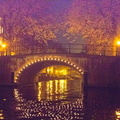 2012 11-Amsterdam Canal Bridge-1||<img src=_data/i/galleries/2_Lances_Favorites/2012 11-Amsterdam Canal Bridge-1-th.jpg>