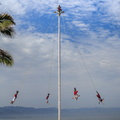 2014 04-Puerto Vallarta Flyers of Papantla||<img src=_data/i/galleries/2_Lances_Favorites/2014 04-Puerto Vallarta Flyers of Papantla-th.jpg>